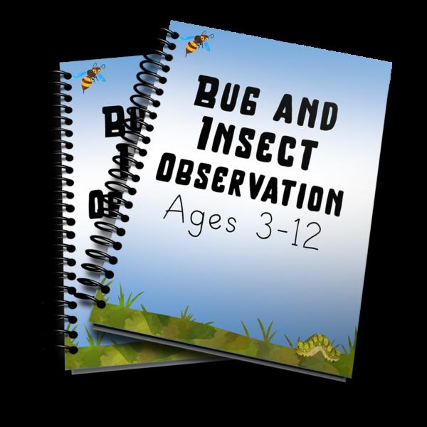Bug Observation 3D