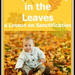 Stop and Play in the Leaves: A Lesson on Sanctification