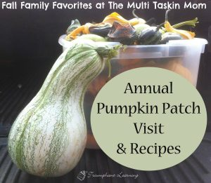 A fun fall outing with your family is the pumpkin patch!
