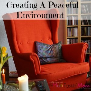 Are you looking for ways to create a peaceful environment in your home? Then we just may be able to help.