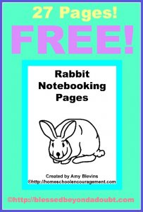 RabbitNotebookingPages-Pin