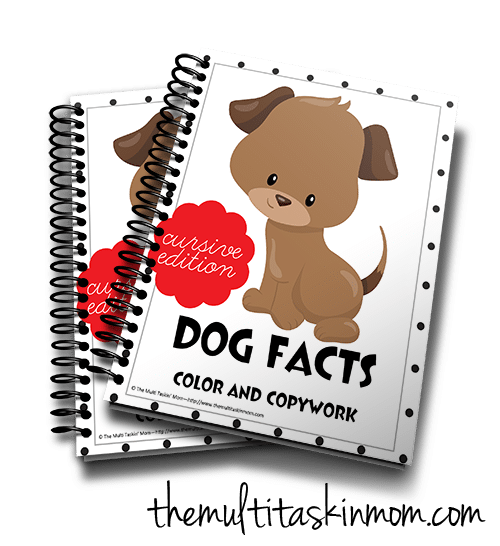 Cusive Dog Facts 3d
