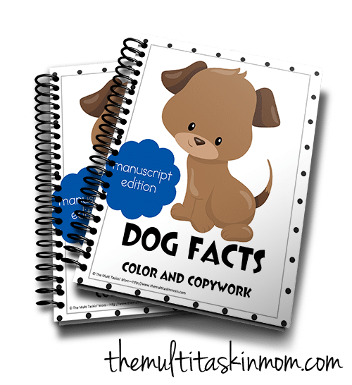 Dog Fact CC M