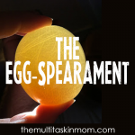 The Egg-Spearament