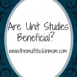Are Unit Studies Beneficial?