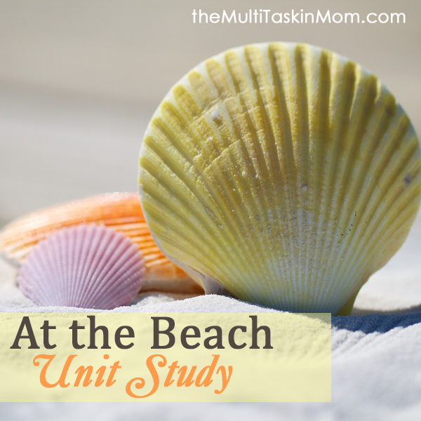 At the Beach Unit Study by The Multi Taskin Mom