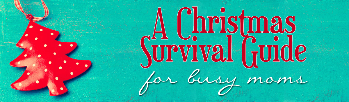 A Christmas Survival Guide Slider