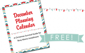 This free December Planning Calendar will help motivate you to get your month scheduled and in order before it even gets here! :: www.themultitaskinmom.com