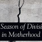 A Season of Division in Motherhood