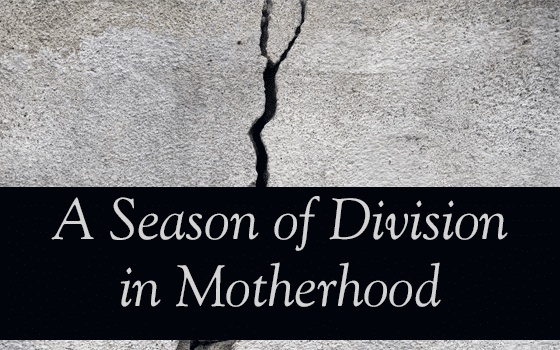 A Season of Division in Motherhood