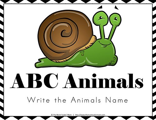Write the Animals Name