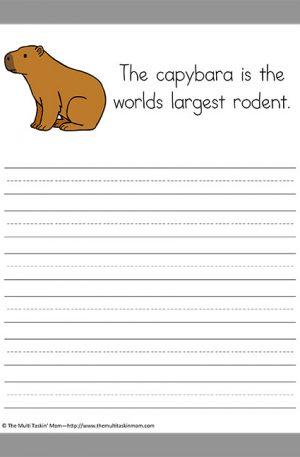 Capybara Copywork