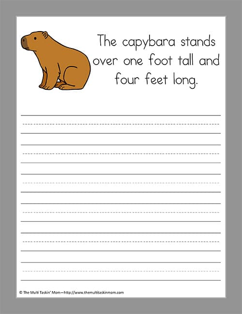 capybara essay Question 1 (essay worth 4 points) explain how energy is transfered in a food web ----- question 2 (essay worth 4 points) wha.
