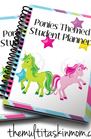 Ponies Themed Student Planner