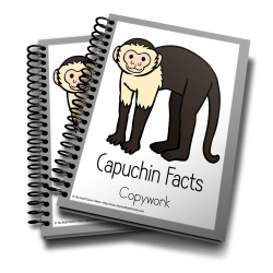 Capuchin Copywork is fun for any grade and available now