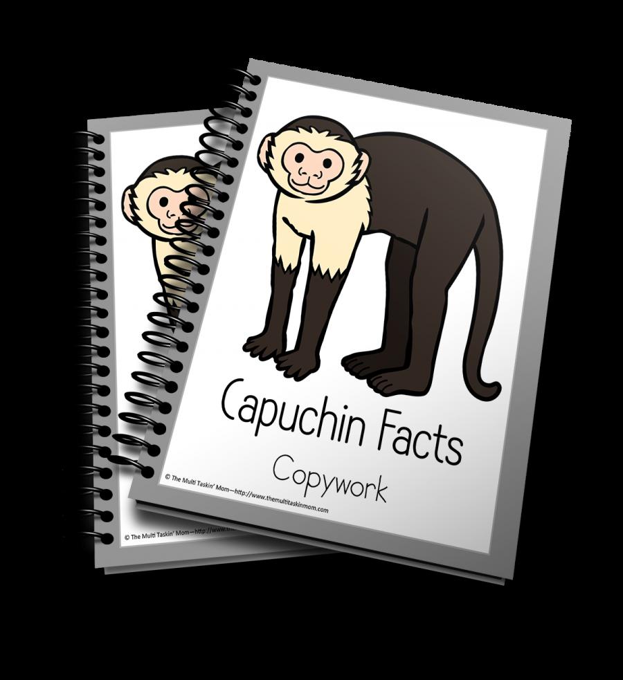 Capuchin Copywork