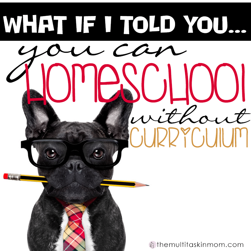 What if I told you that you can homeschool without curriculum