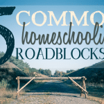 5 Common Homeschooling Roadblocks