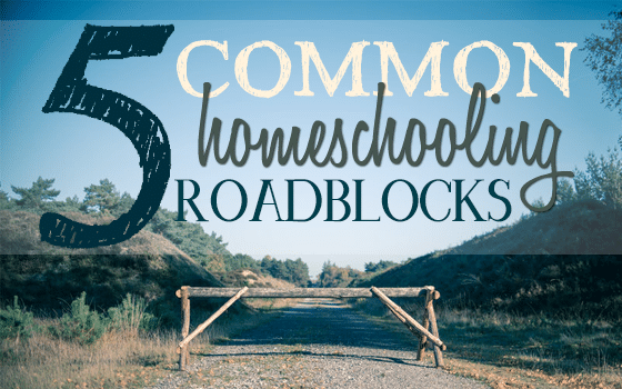 5 Common Homeschooling Roadblocks