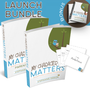 Launch Bundle just for product page