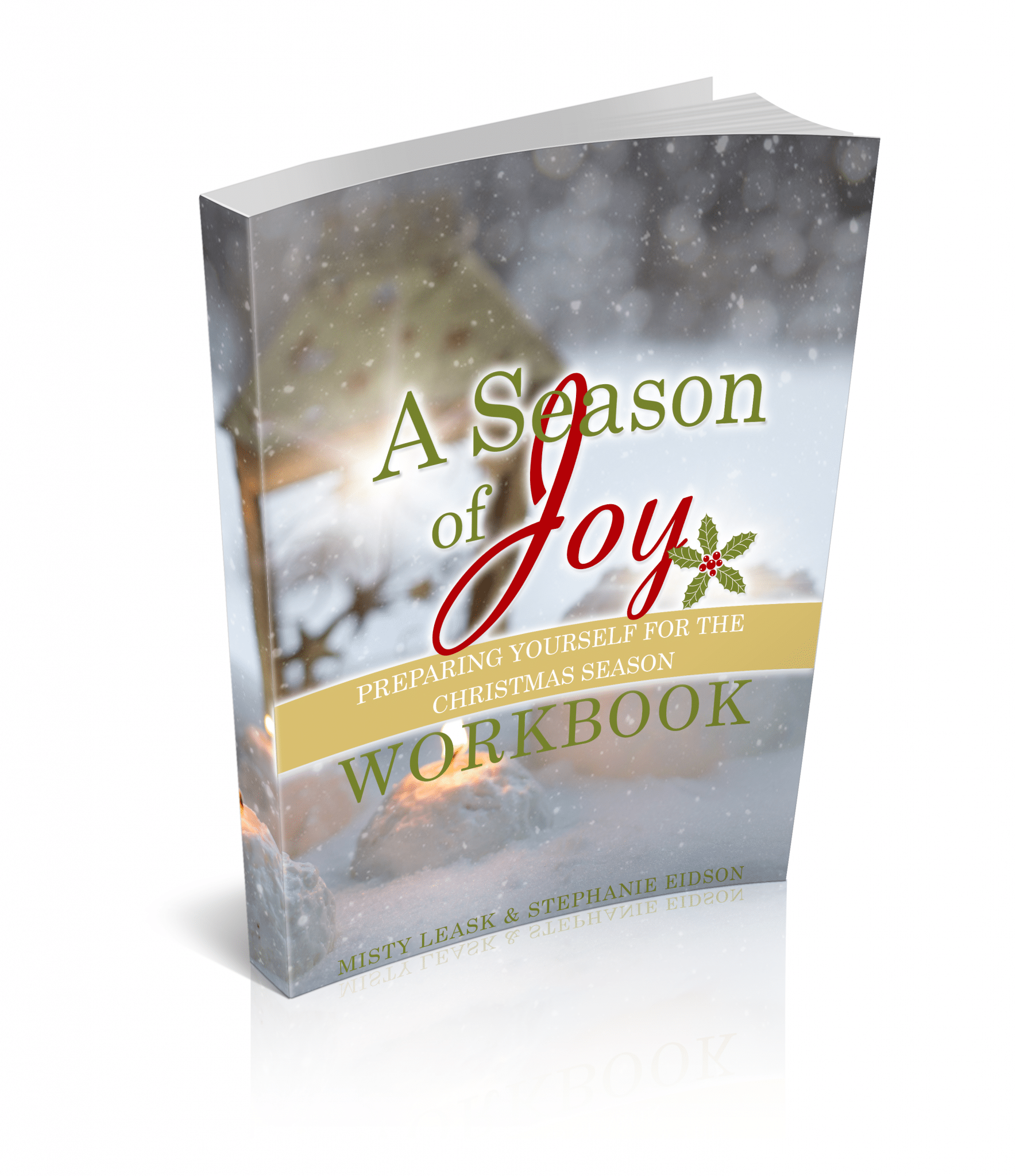 a-season-of-joy-workbook-cover-3d