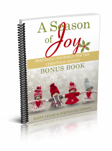 a-season-of-joy-workbook-cover-bonus-3d