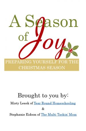 A Season of Joy – Workbook for Adults