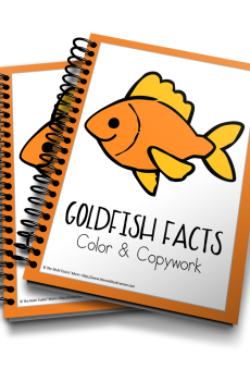 Goldfish Color and Copywork 3D