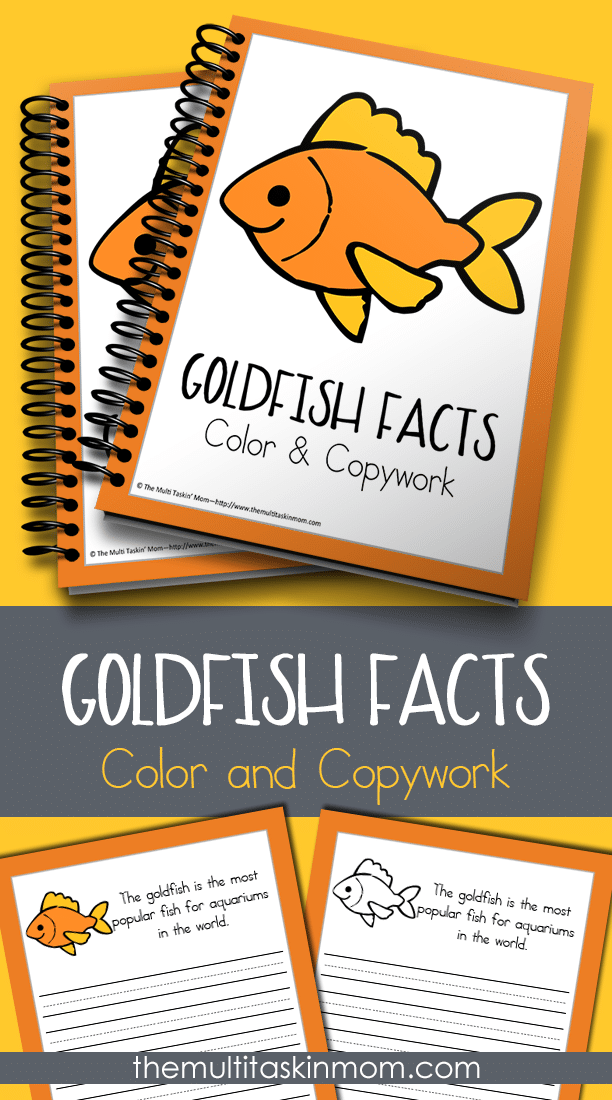 Goldfish Facts Color and Copywork for all ages