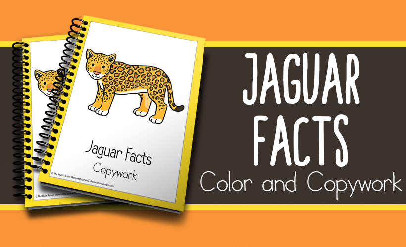 Jaguar Facts Color and Copywork