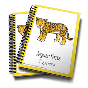 Jaguar Facts Copywork 3D