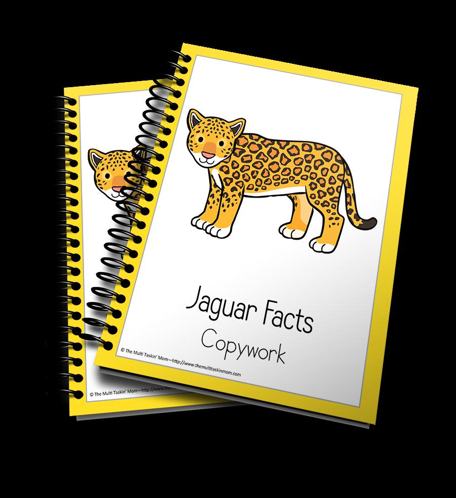 Jaguar Copywork