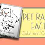 Pet Rabbit Facts Color and Copywork