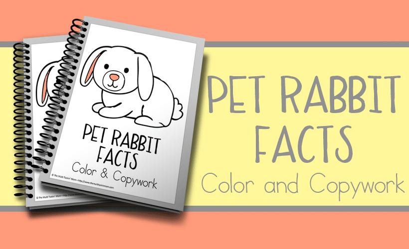 Pet Rabbit Facts Color and Copywork