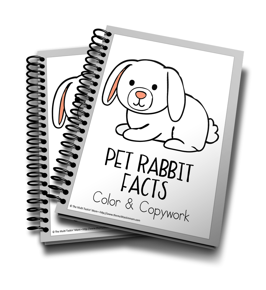 Pet Rabbit Facts Color & Copywork