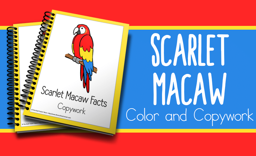 Scarlet Macaw Facts Color and Copywork