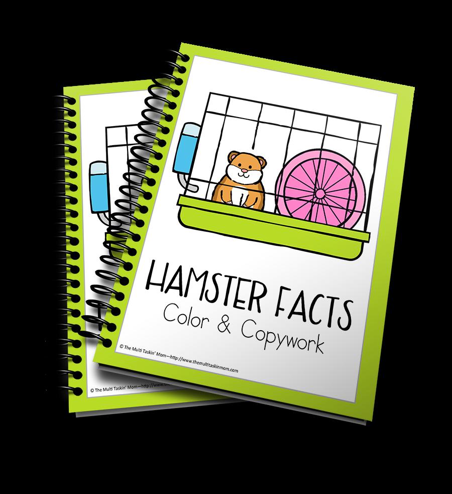 Hamster Facts Color & Copywork