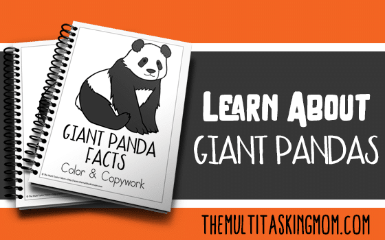 Giant Panda Facts Color and Copywork