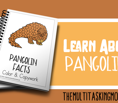 Pangolin Facts Color and Copywork