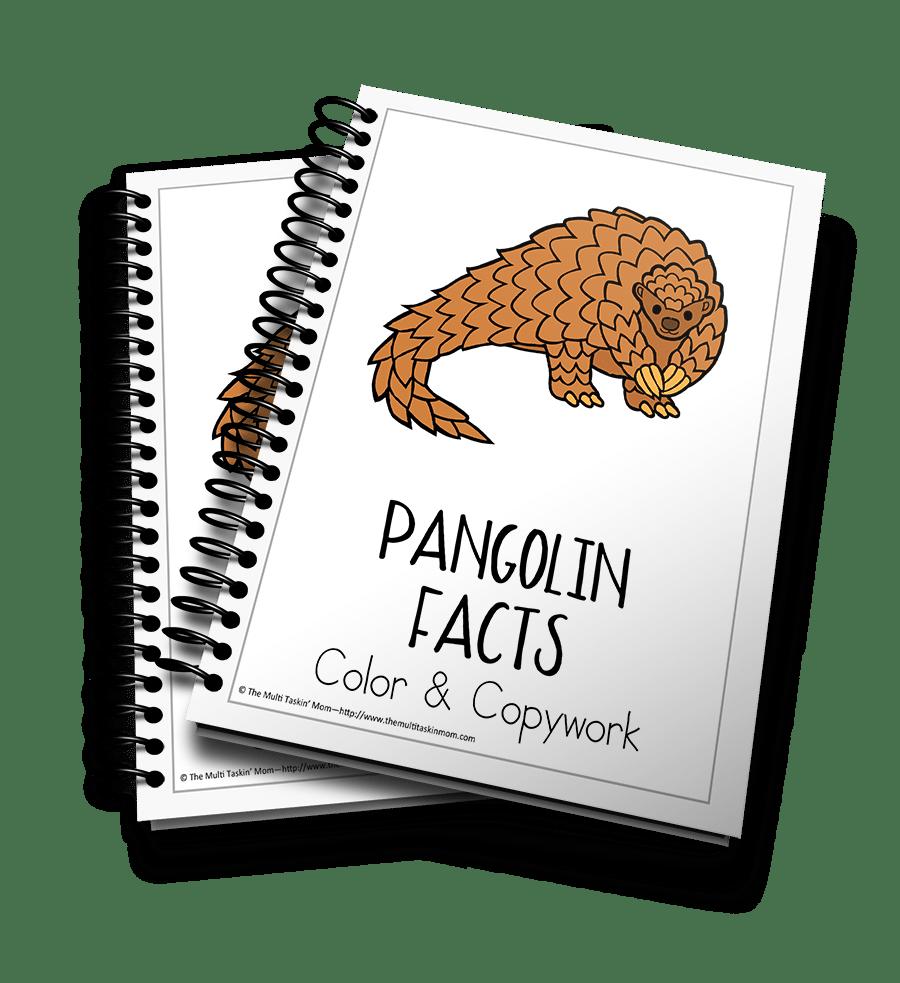 Pangolin Facts 3d