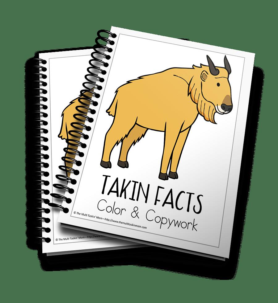 Takin Facts 3D