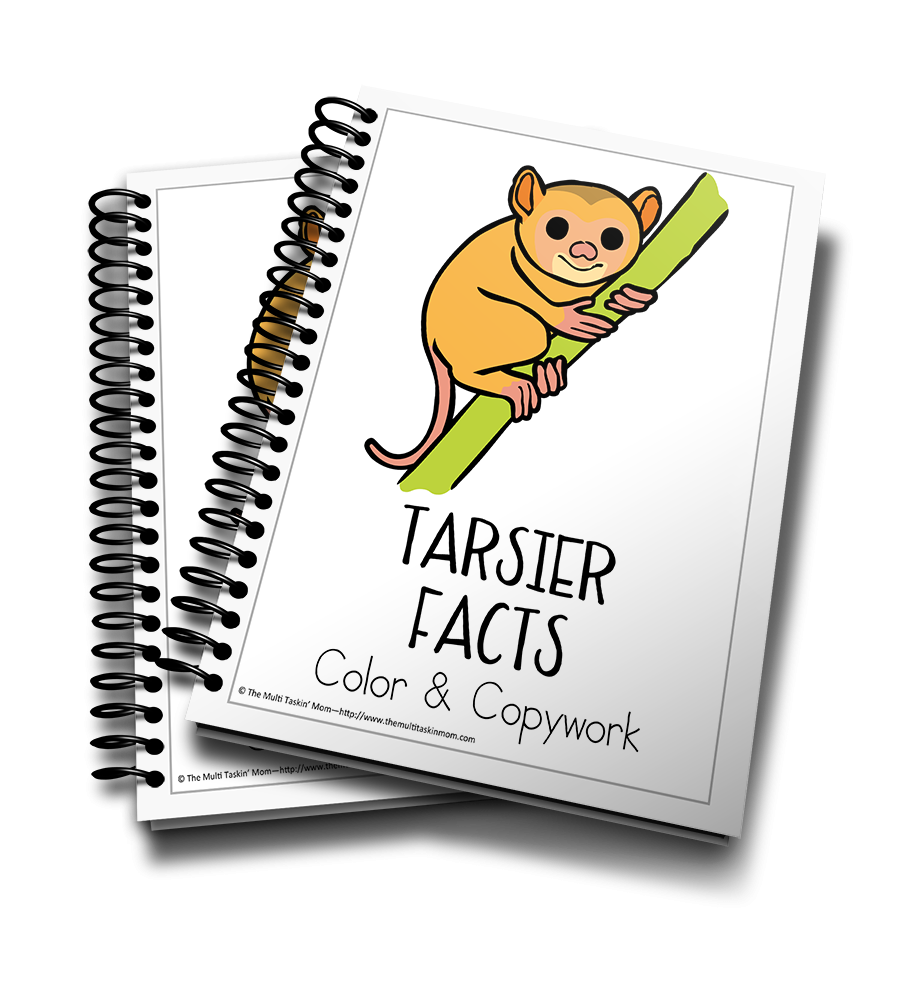 Tarsier Facts Color and Copywork