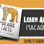 Macaque Facts Color and Copywork