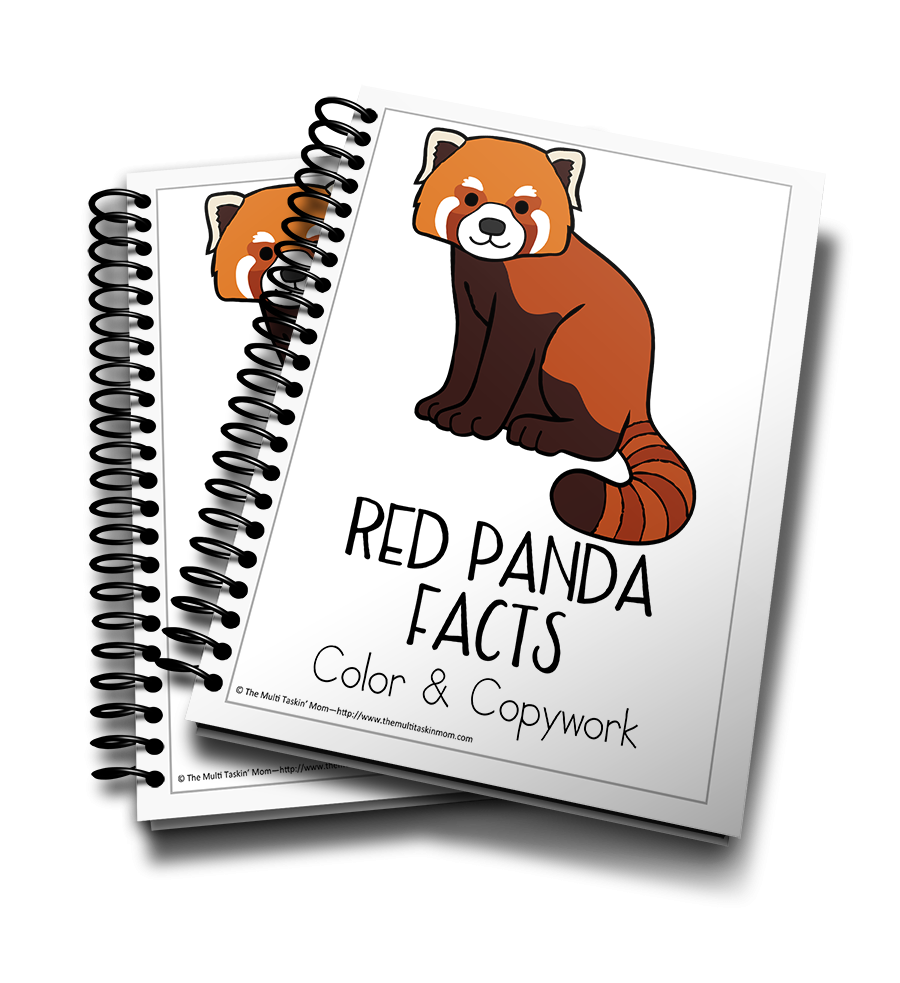 Red Panda Color and Copywork