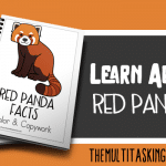 Red Panda Facts Color and Copywork