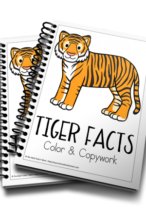 Tiger Color and Copywork