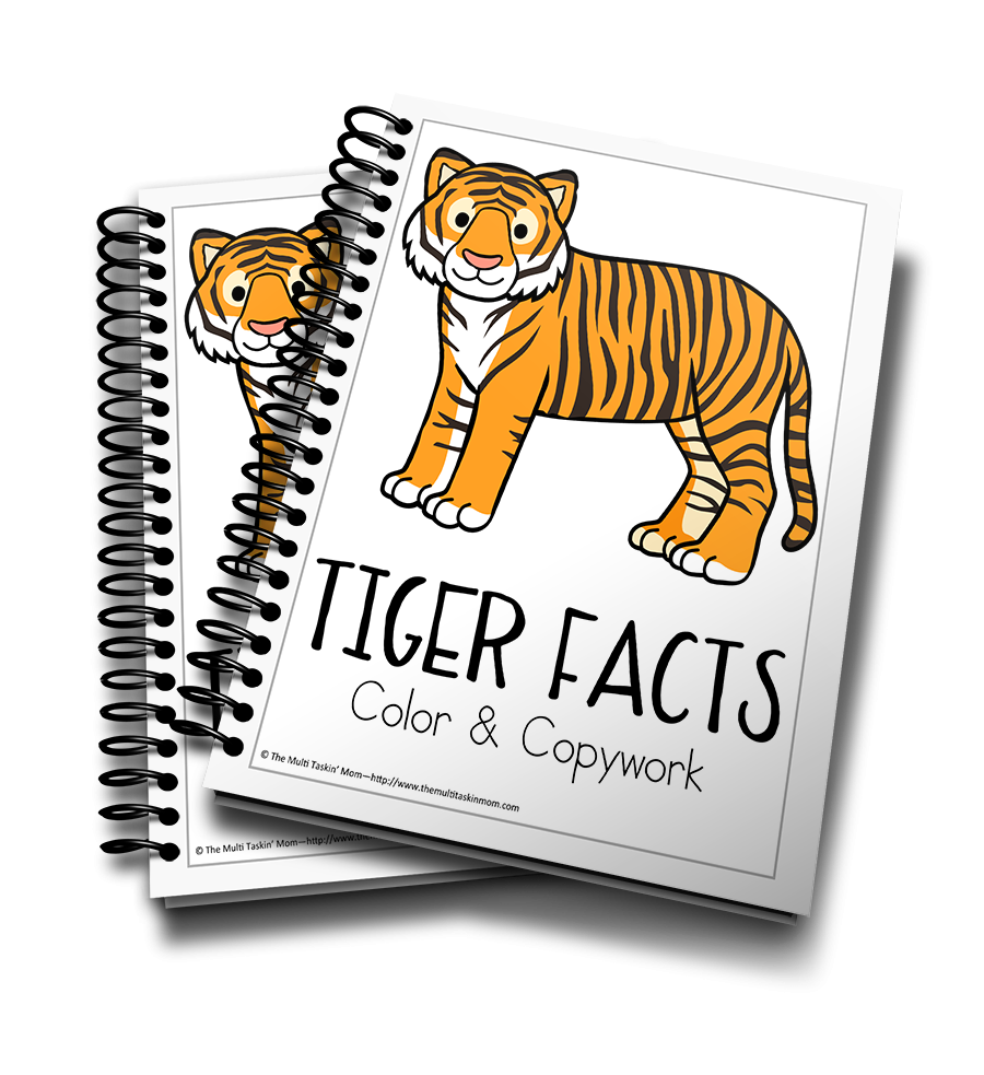 Tiger Color and Copywork