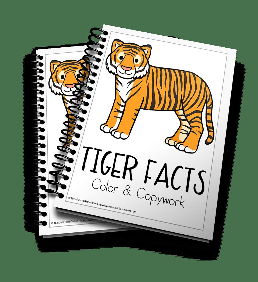 Tiger Facts 3D