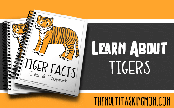Tiger Facts Color and Copywork