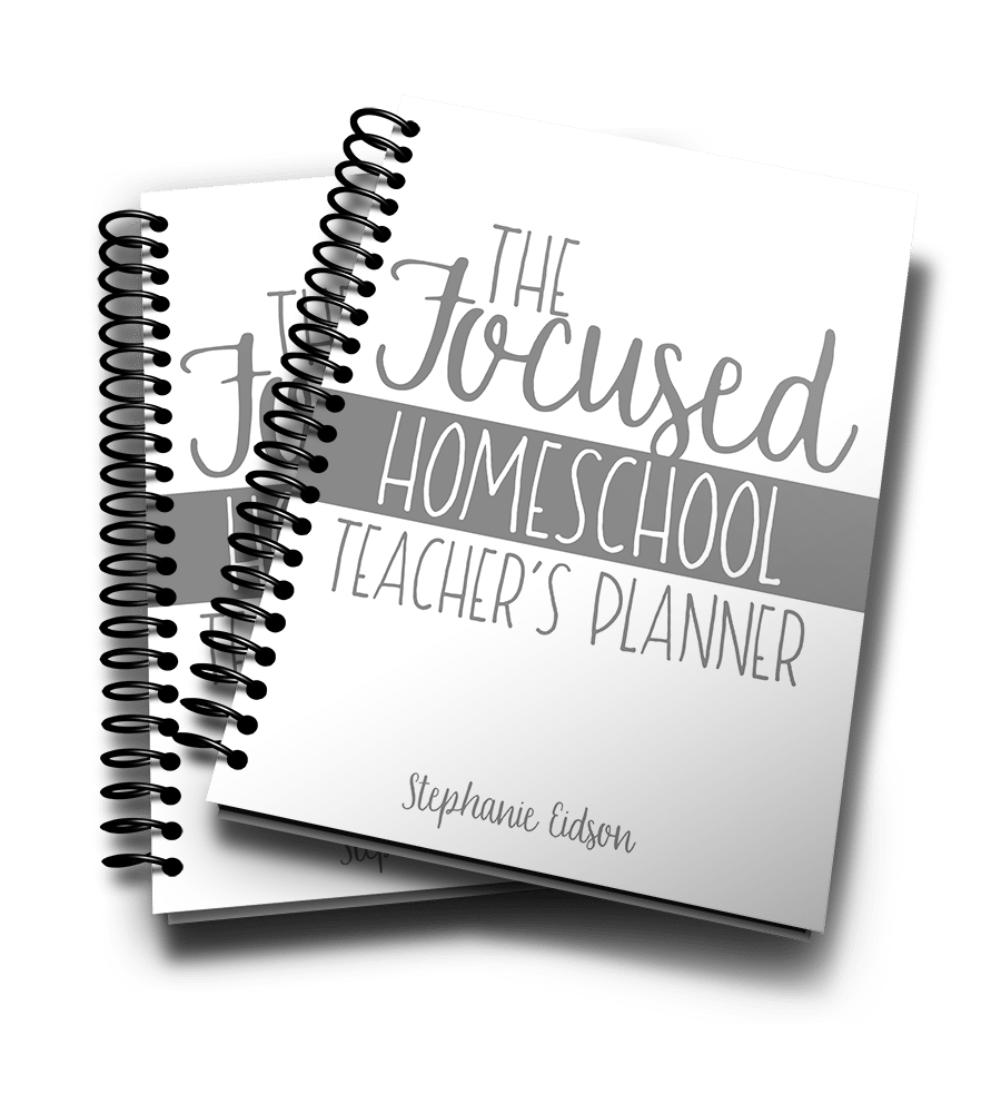 Focused Teacher Planner 3D